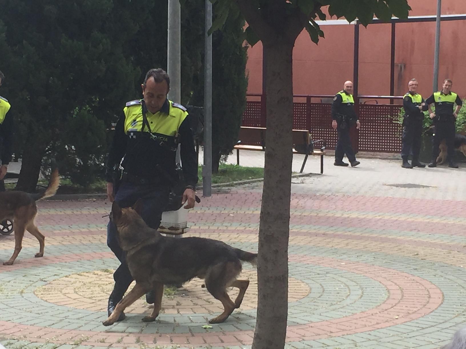news Mirasierra Policia