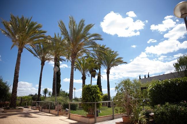 DomusVi-residencia-mayores-Sierra-de-las-Nieves (5)