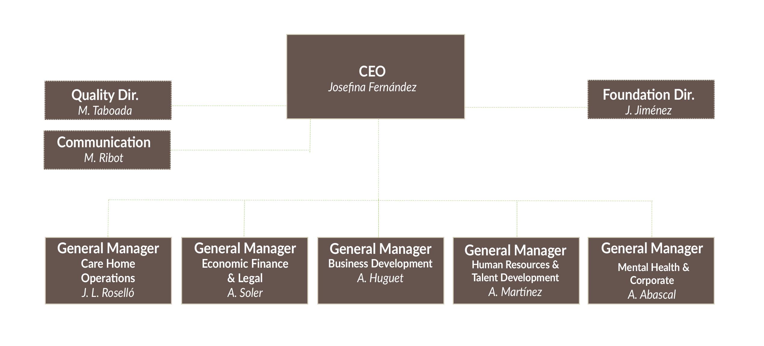 Organizational Chart DomusVi