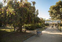 Residencia mayores Azalea Marbella Jardín