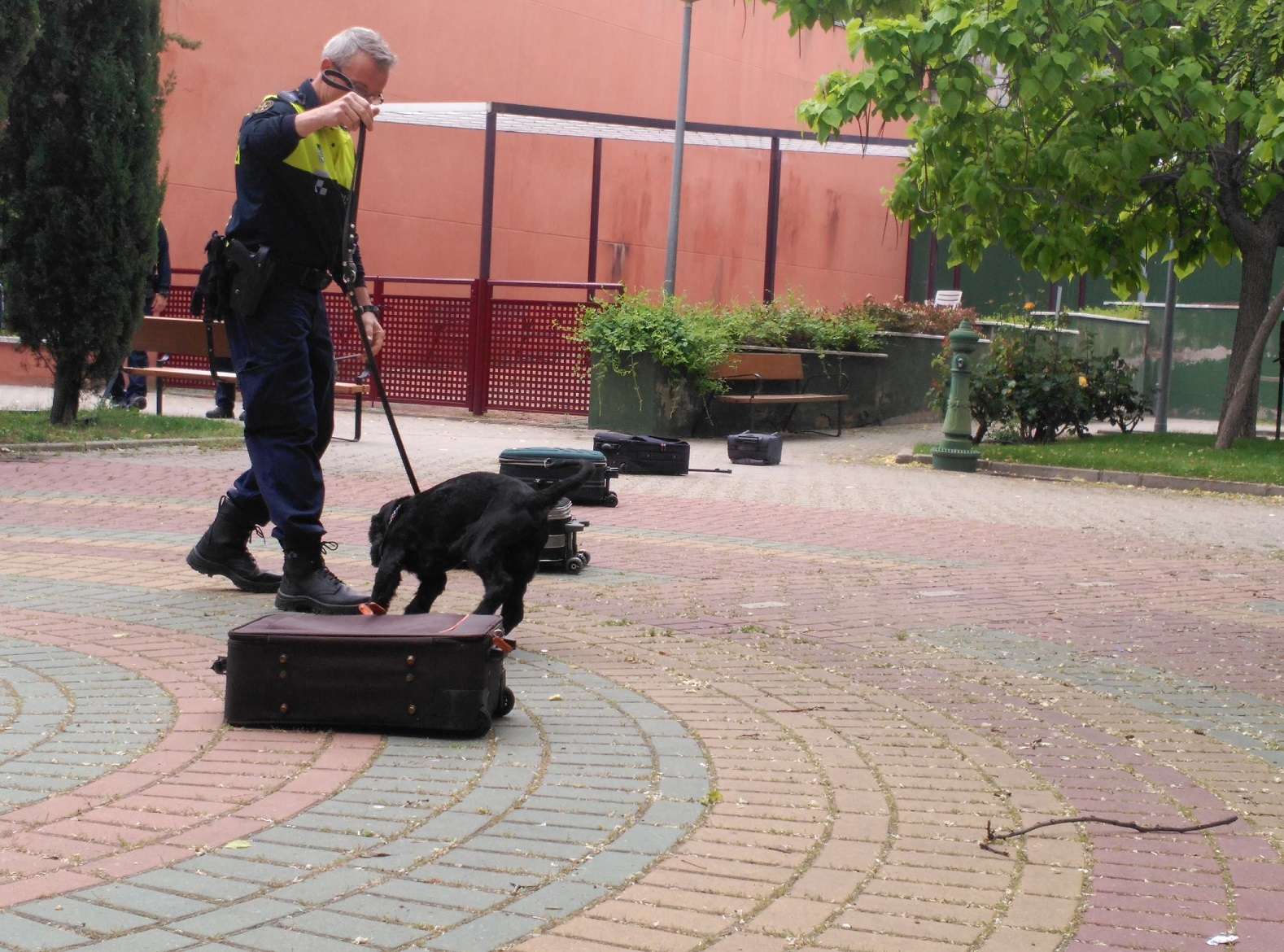 news Mirasierra Policia3