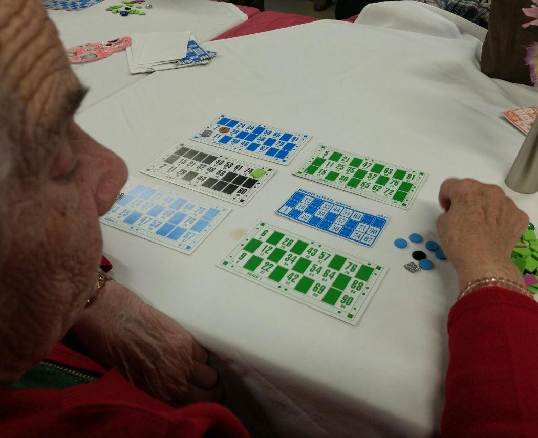 bingo 7