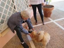 SARQUAVITAE MONTE JARA UNIDAD DE TRASTORNOS DE CONDUCTA TERAPIA CON ANIMALES