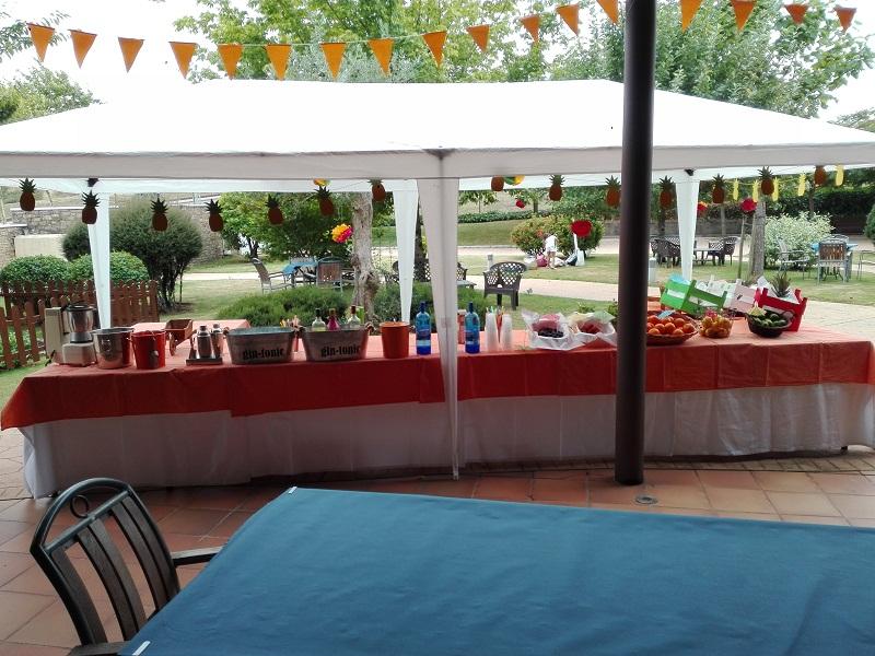 Fiesta Hawiana Apóstol 2017 SARquavitae San Lázaro (20)
