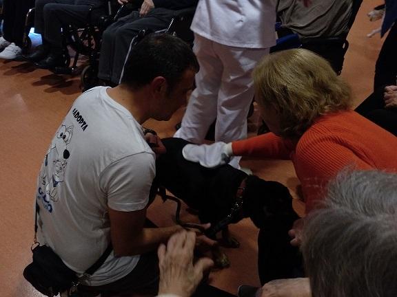 Actividad con perros - DomusVi Babel (4)