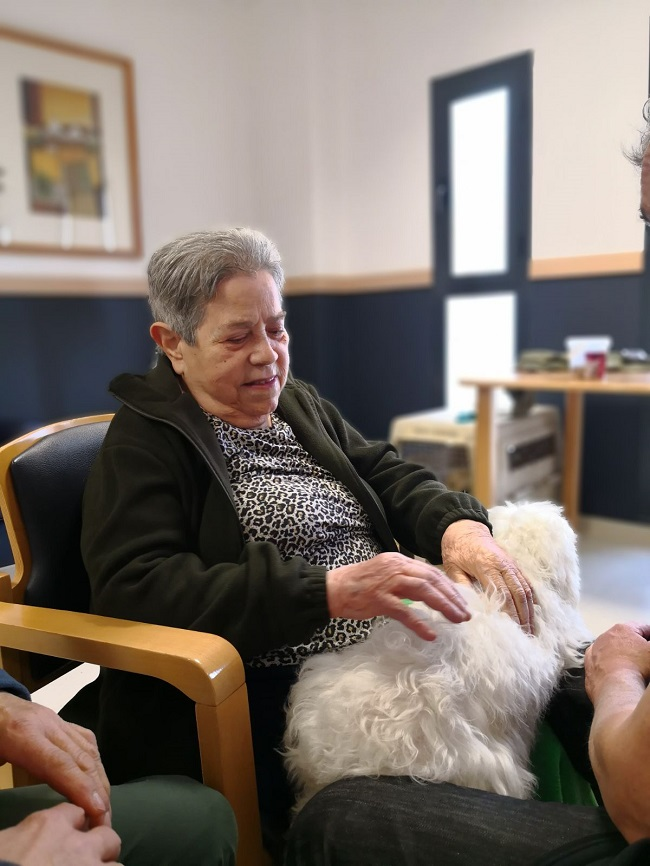 Terapia animal en DomusVi Remedios