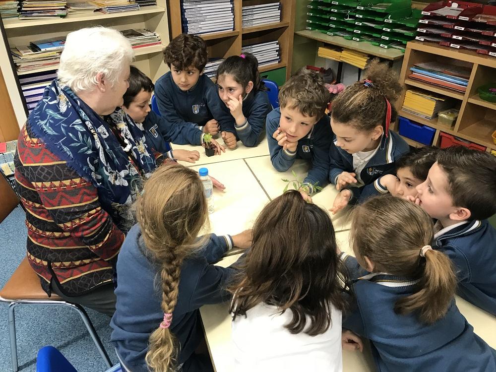 Proyecto Huerto Colegio Manuel Peleteiro5b