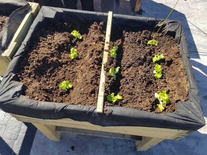 Jardinera 2 Matogrande
