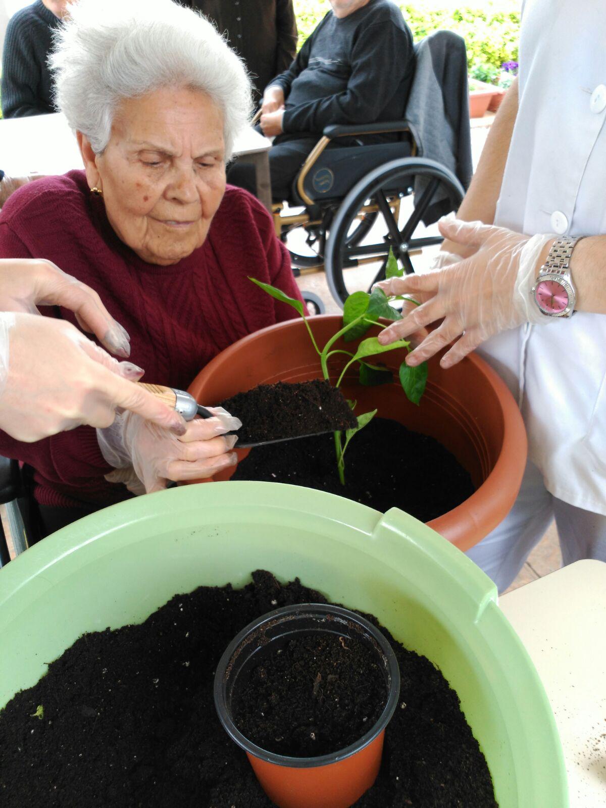 Taller jardinería Babel (6)