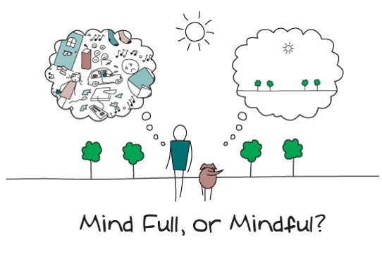 Jornada de Mindfulness