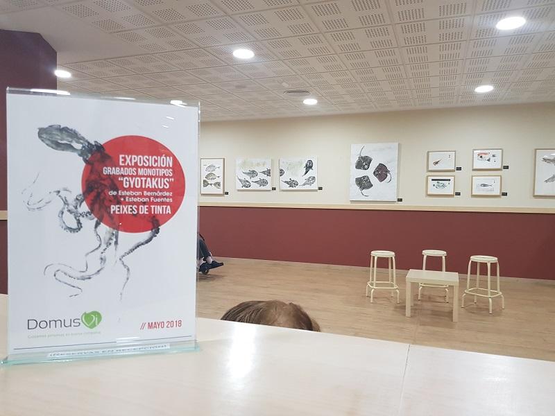 Residencias A Coruña