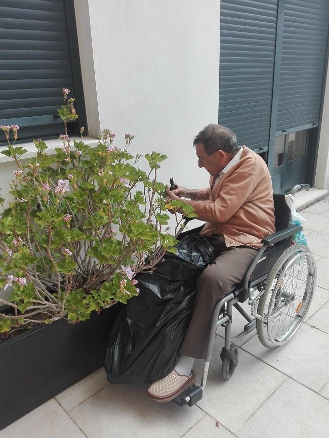 jardinería en la residencia