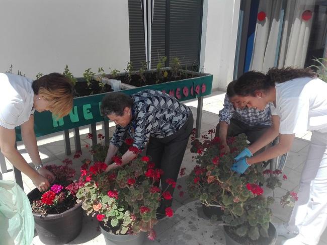 Taller de jardinería en residencia