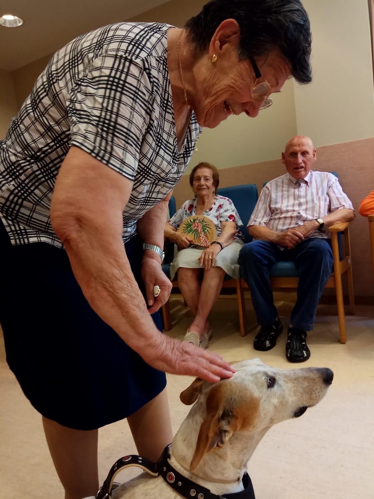 Terapia canina (2)