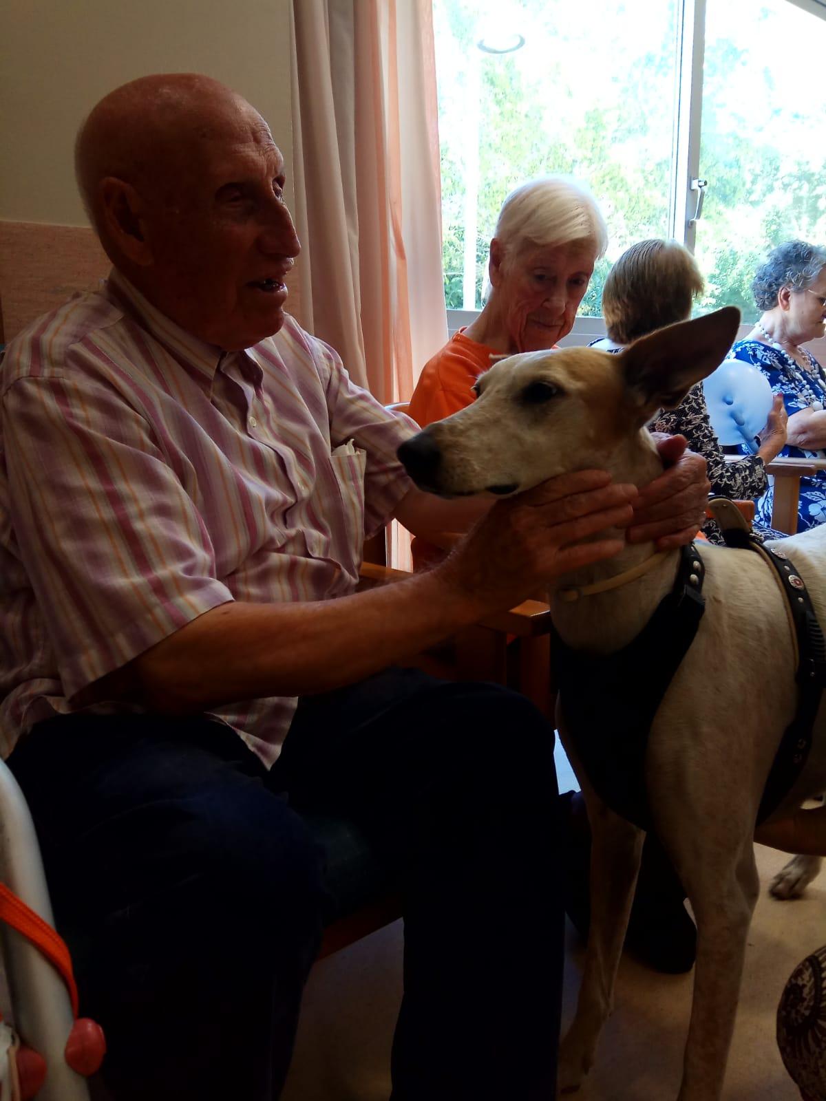 Terapia canina (3)