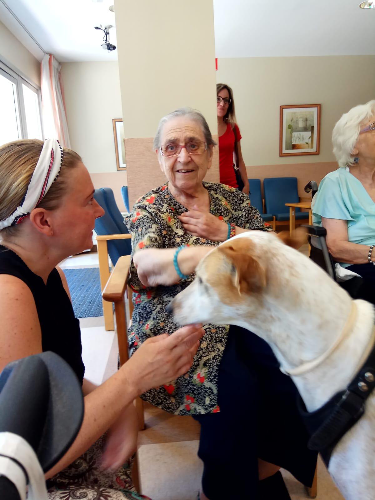 Terapia canina (5)