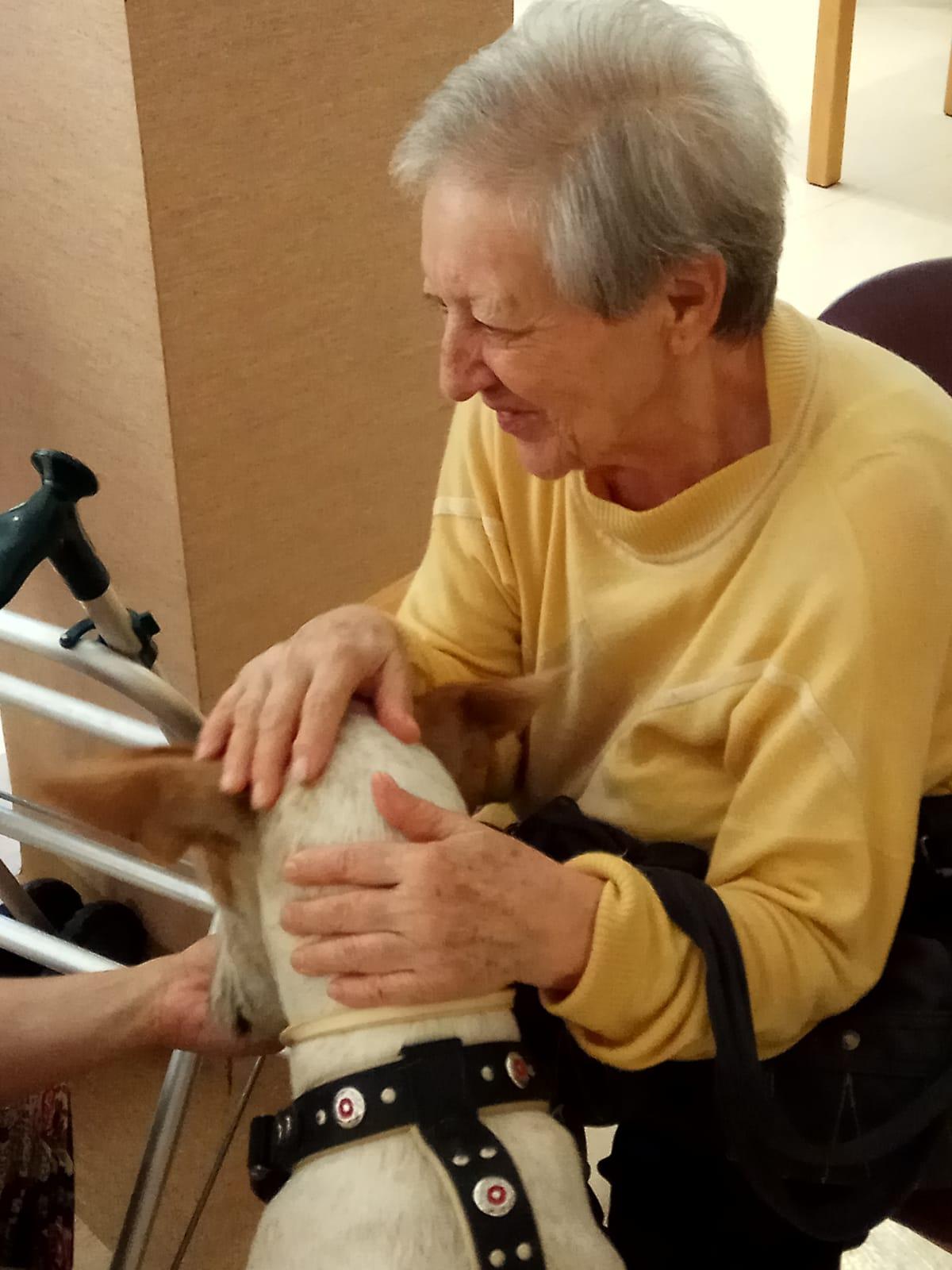 Terapia canina (7)