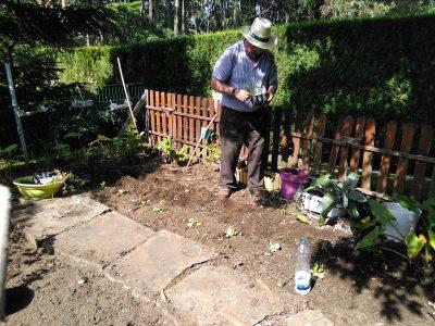 jardinería 2.