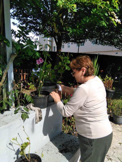 jardinería 3.