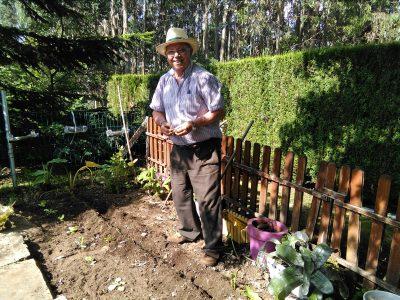 jardinería 4