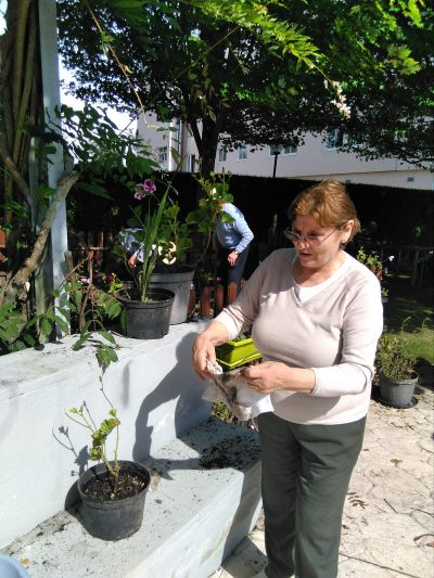 jardinería 5.