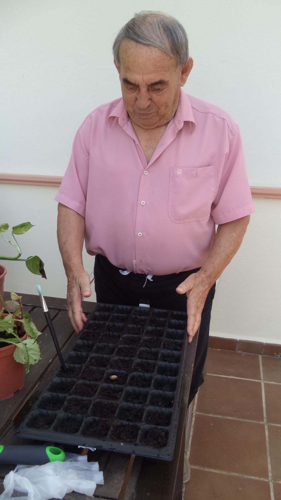 Jardinería Y DomusVi Fuentesol