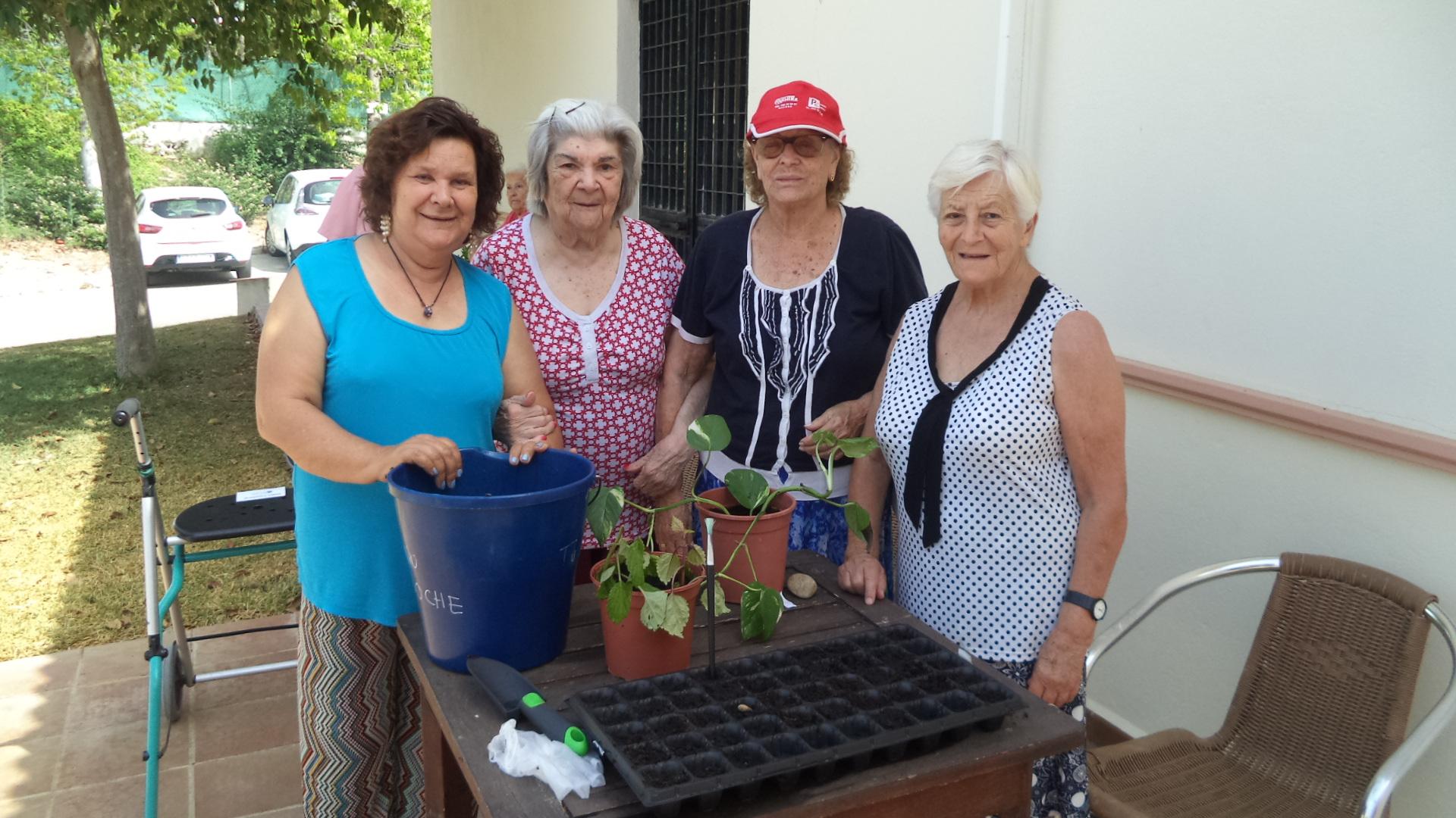 Residencia DomusVI Fuentesol y la Jardineria