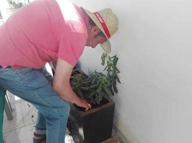taller de jardinería en la residencia