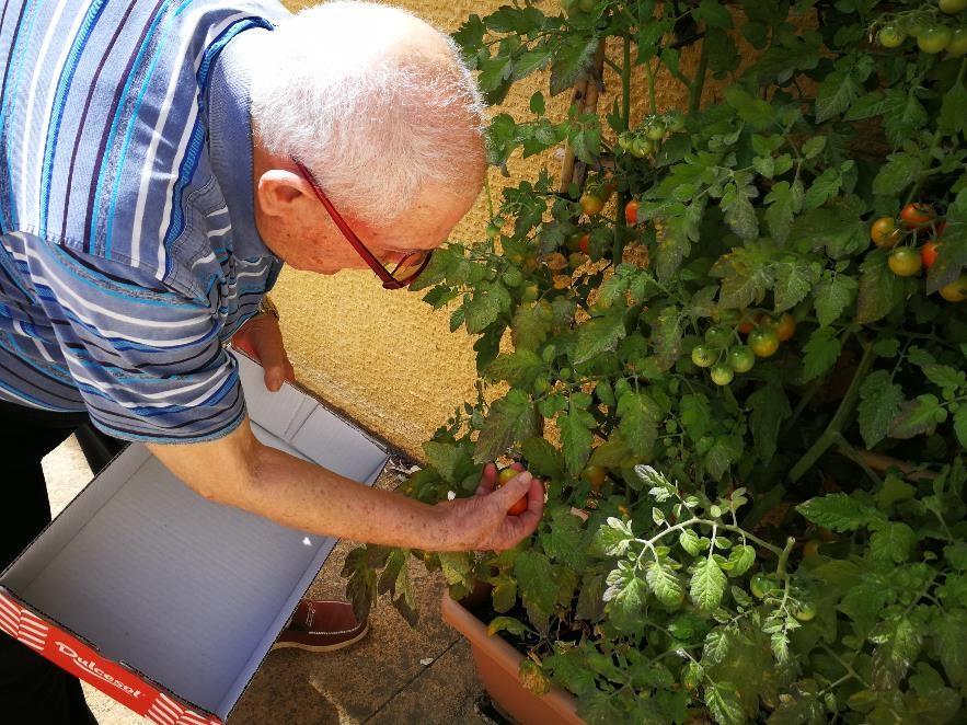 Taller de horticultura