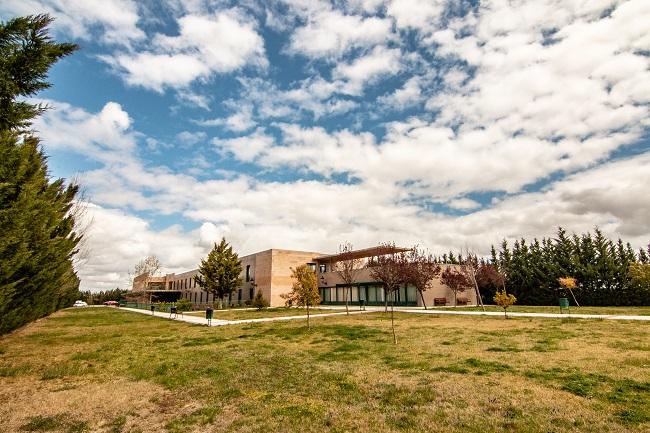 DomusVi Villaralbo jardin