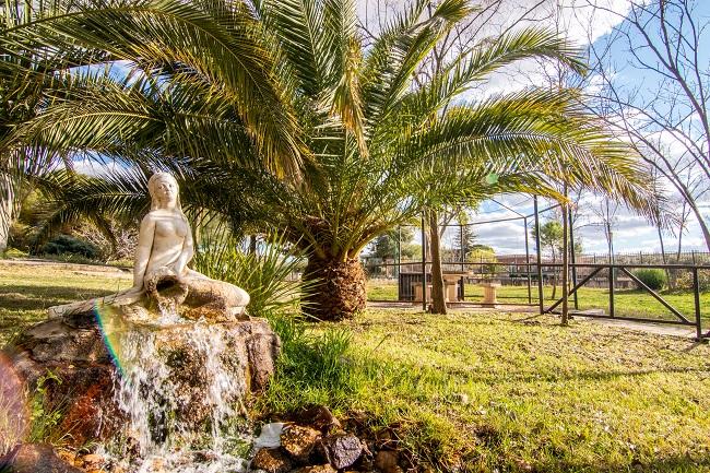 DomusVi Virgen de la Blanca jardin1
