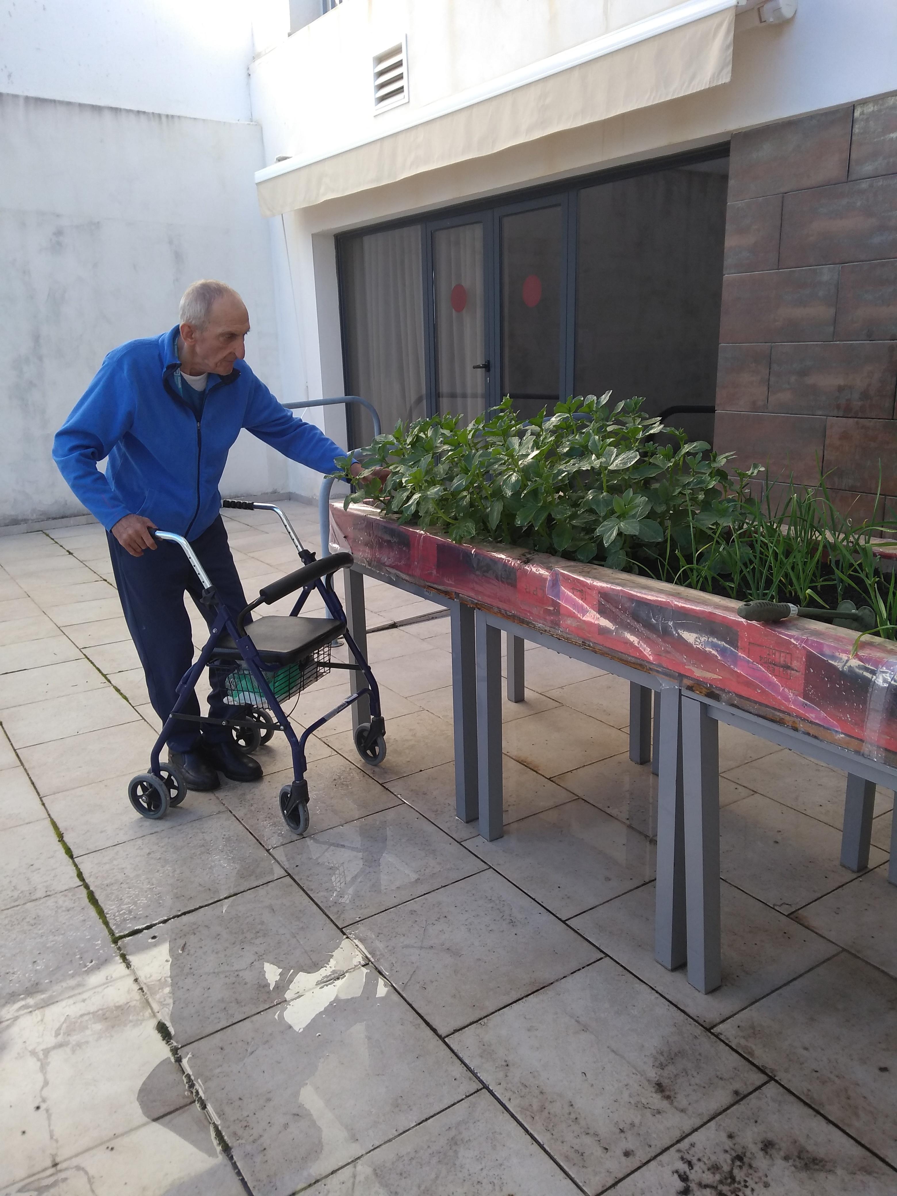 taller de jardinería