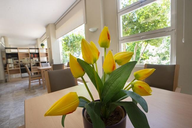 Residencia Jardines de Llíria Sala de estar