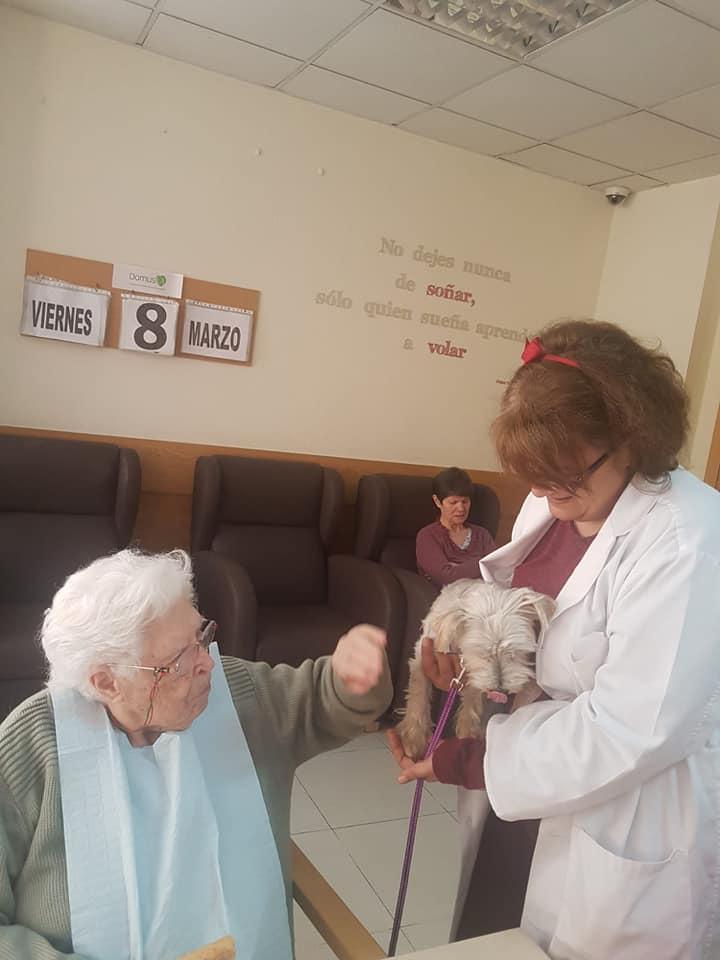 Terapia con animales