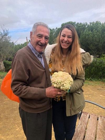 Recogemos una coliflor del huerto en DomusVi Alcalá de Guadaíra