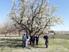 SA Primavera 14