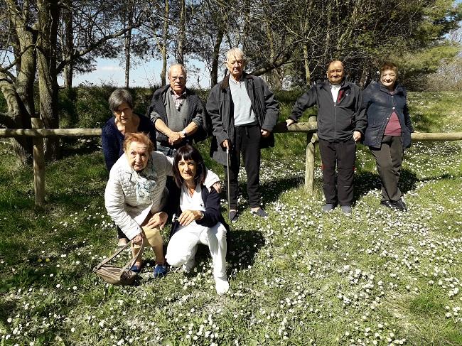 SA Primavera 5