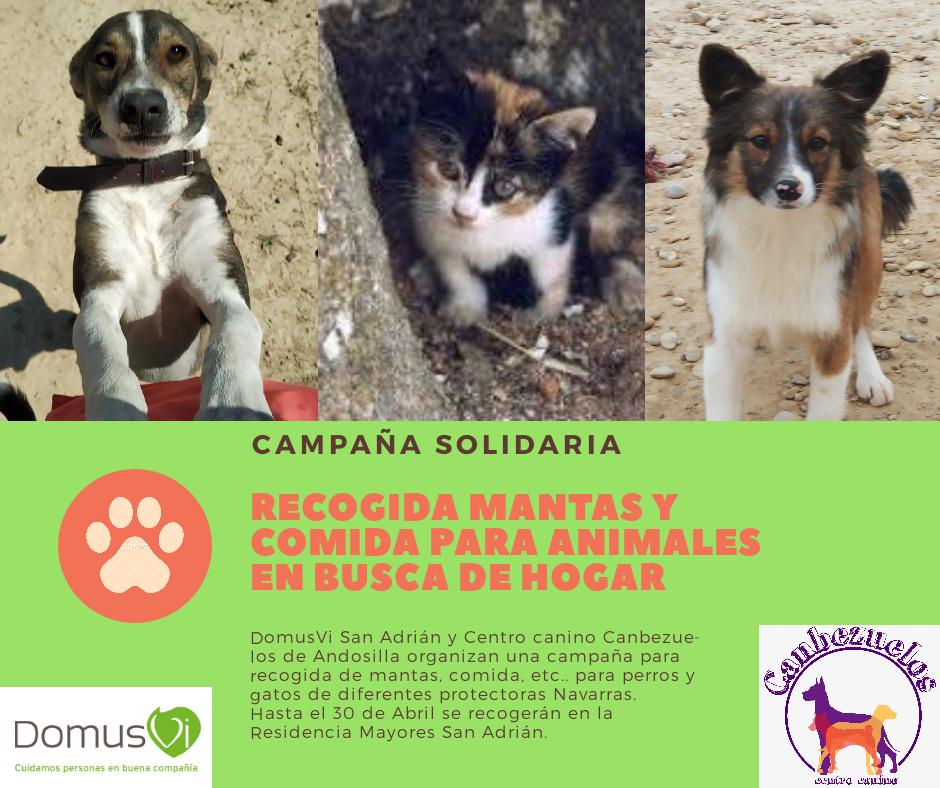 campaña solidaria San Adrián