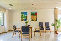 Residencia Las Laceras Bizkaia Sala de Estar detalle