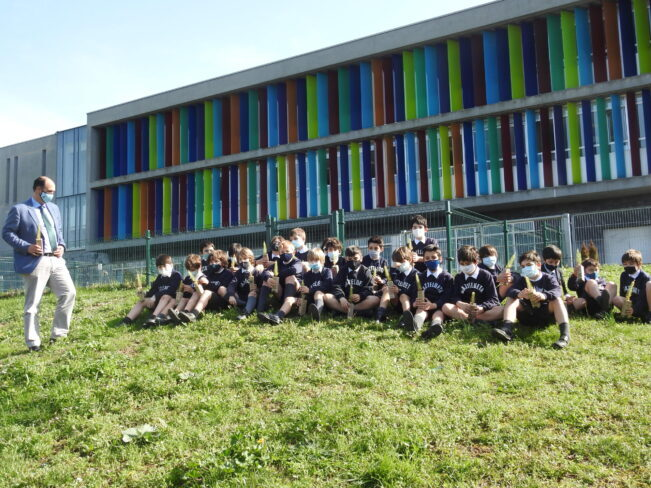 Colegio Bilbao Domustree