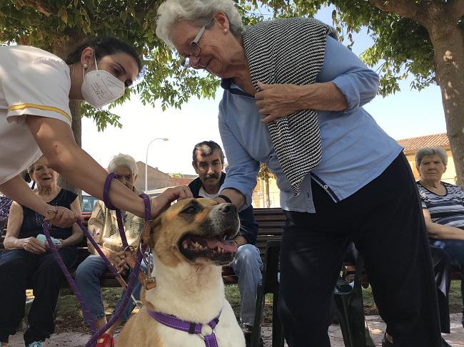 DomusVi-residencia-de-mayores-San Adrián-Día-Internacional-Del-Perro (3)