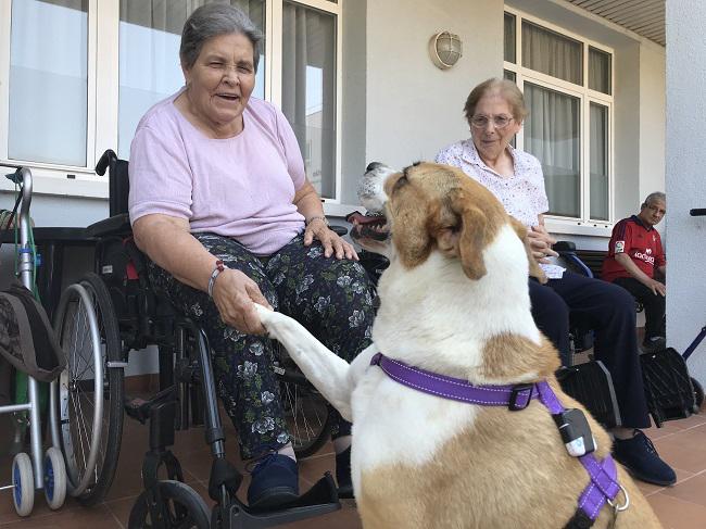 DomusVi-residencia-de-mayores-San Adrián-Día-Internacional-Del-Perro (5)